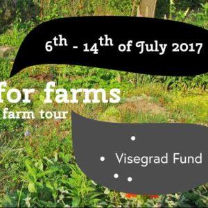 Dá sa farmárčiť vo veľkom za pomoci permakultúry?